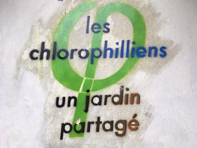 Les Chlorophilliens