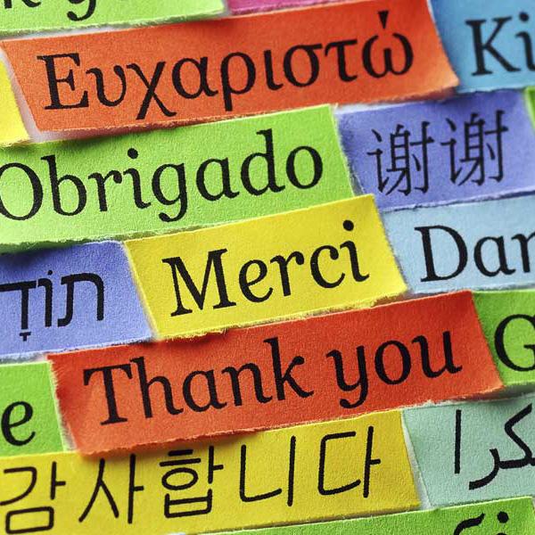 Babille market, partagez vos langues ! et gratiferia
