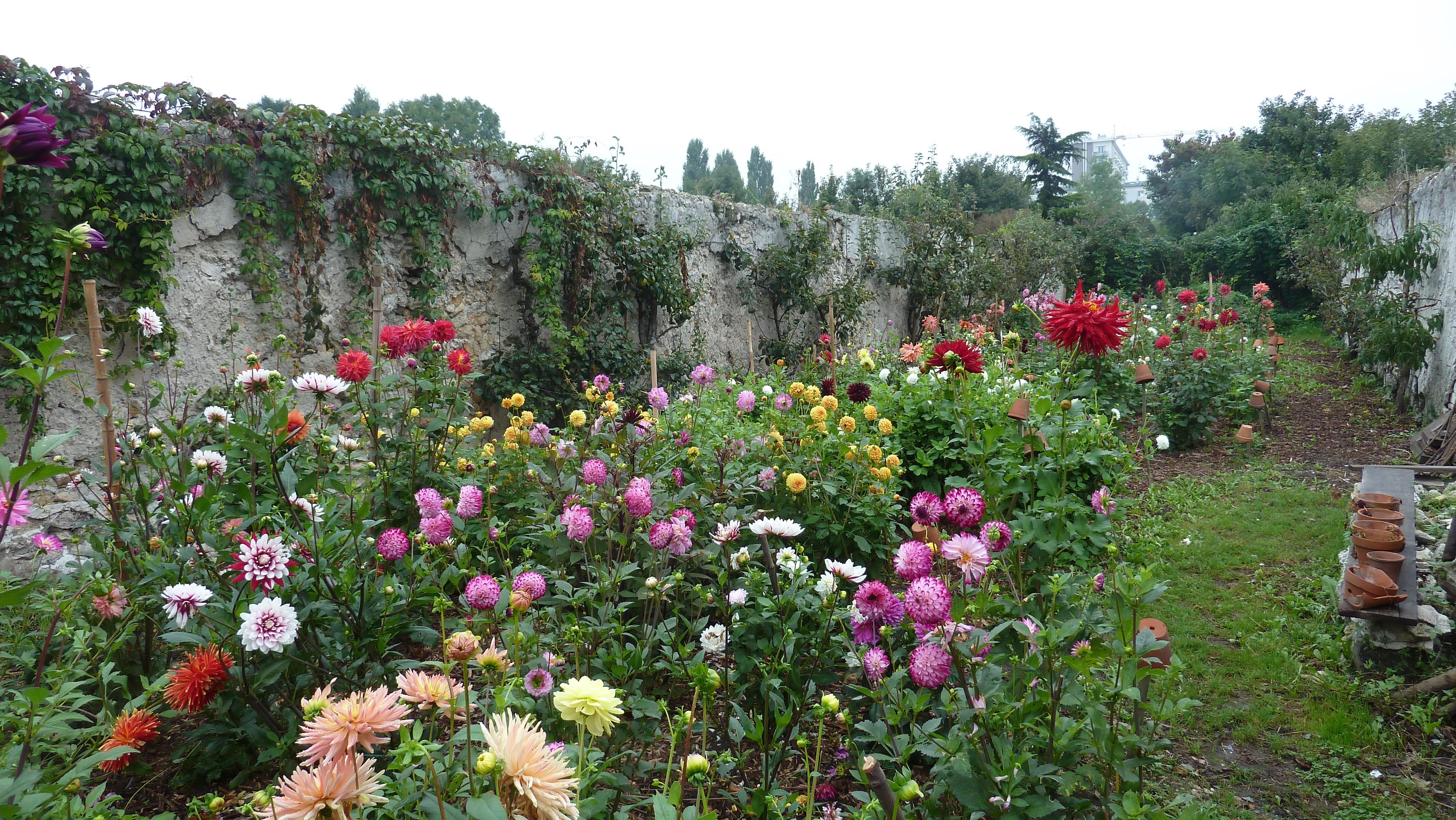 Visite du Jardin Pouplier et Gratuiterie Leø